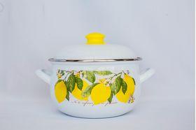 Кастрюля Caprice 299-2214 Эмаль 4,8л мет. крышка Лимоны в Симферополе
